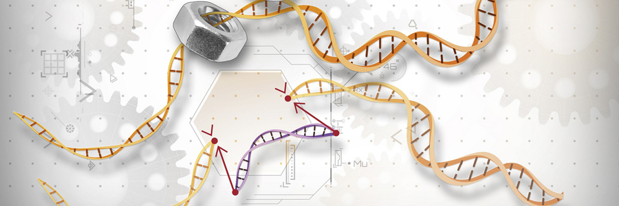 14th March: Genome Editing Workshop aimed at students aged 11-16 @Cambridge Science Festival