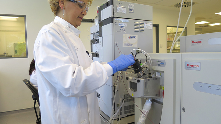 Andrea preparing lipidomics samples