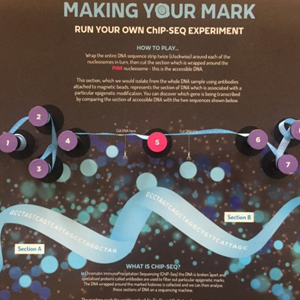 Making Your Mark board
